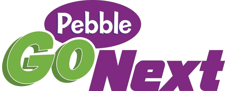 Image result for pebblego next image
